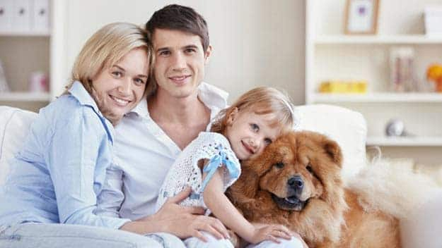 Wills & Trusts dog-young-family Direct Wills Oakham